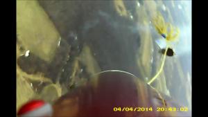vlcsnap-2014-08-22-19h19m18s190